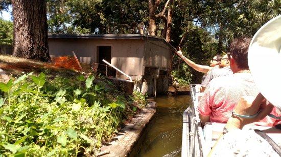Winter Park, FL: Narrow Canals