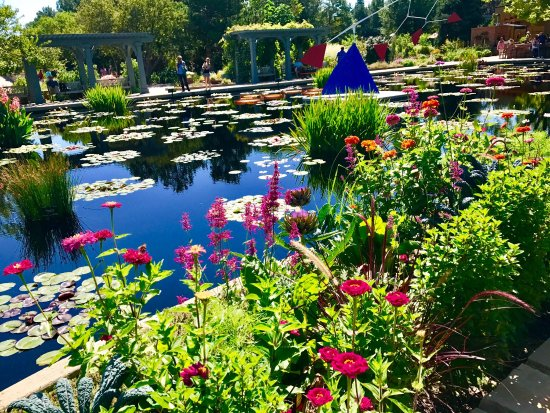 Denver Botanic Gardens: Beautiful Sunny Day Made Spectacular By These  Beautiful Gardens In Denver !