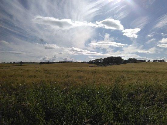Stonehaven, UK: campagna scozzese