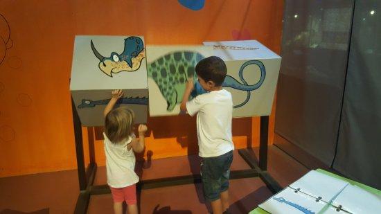 Esperaza, Prancis: Dinosauria
