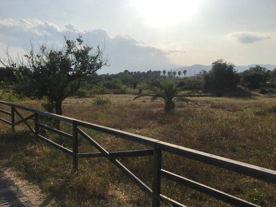 Giardini Naxos, Italië: photo1.jpg