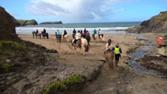 Newton Equestrian Holidays Mullion 2018 All You Need