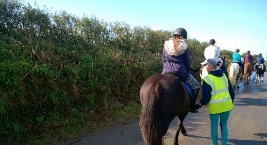 Walking Down Country Lanes Picture Of Newton Equestrian