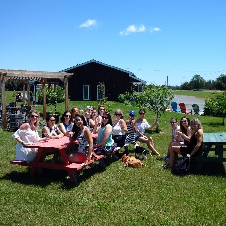 Waupoos, Canadá: Cyclists enjoying the vineyard & wine tasting