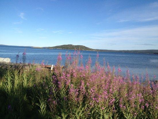 Hare Bay Φωτογραφία