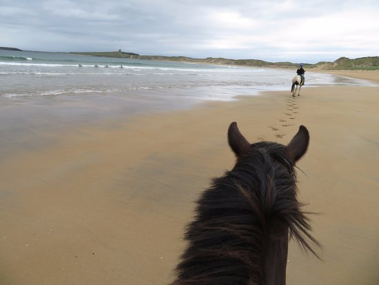 Island View Riding Stables: Riding with Jerry on the beach via Island View stables in Sligo