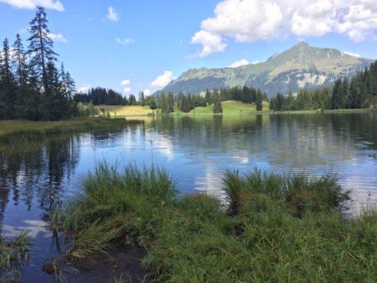 Lauenen, سويسرا: Lauenensee von der Westseite