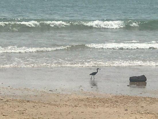 Lanta Castaway Beach Resort: photo6.jpg