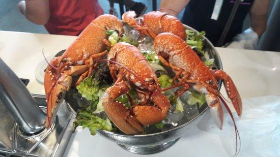 Cirueña, España: Restaurante Golfito