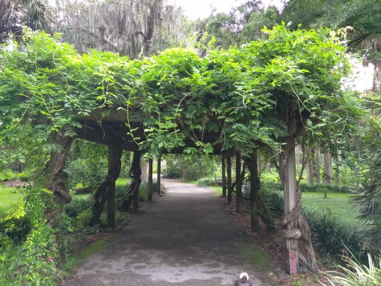 Silver Springs, FL: Relaxing park