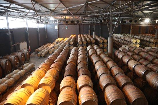 Nederburg Wines: Wijn genoeg!
