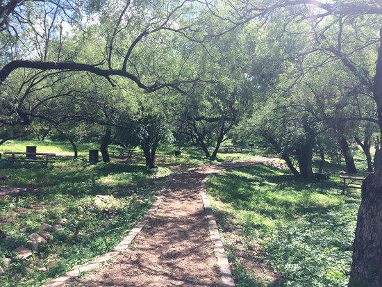 Patagonia, AZ: Areas verdes para acampado