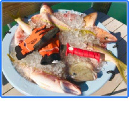 Boca Grande, FL: Gulf of Mexico Delicacies.