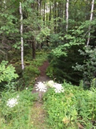 Mendon, VT: Walking trail