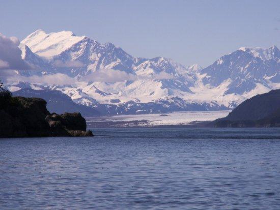 Gustavus, AK: Brady Glacier from Elfin Cove
