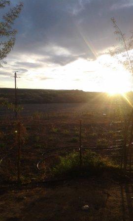 Bella de Karoo: sunset
