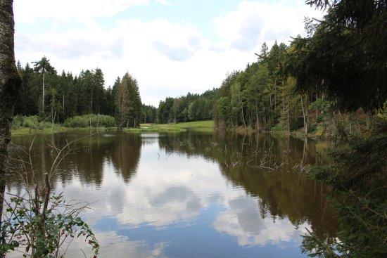 Dreiburgensee - Rothauer See