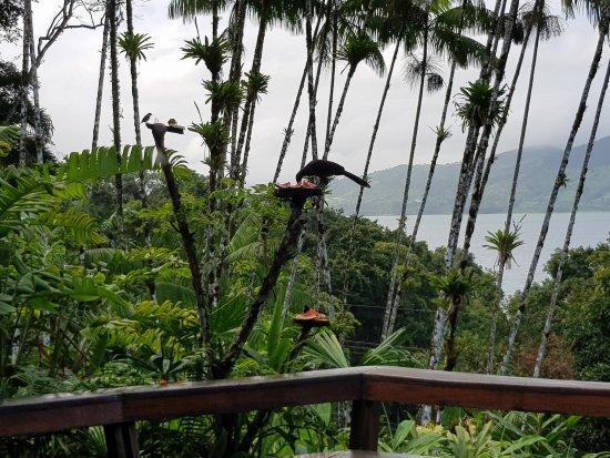Nuevo Arenal, Kostaryka: 20170818_074006_large.jpg