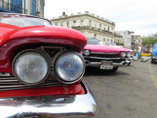 Old Havana: CARs AWAiT YOU