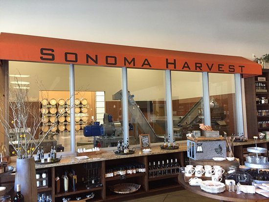 ‪Sonoma Harvest Olive Oil & Winery‬