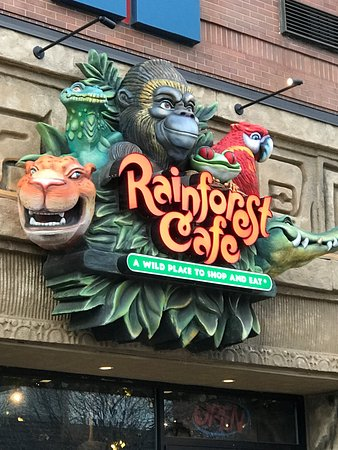 Does The Rainforest Cafe Have A Bar