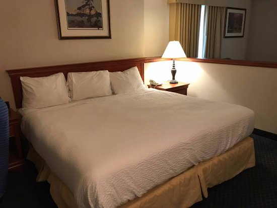 Days Inn & Suites - Niagara Falls Centre St. By the Falls : Very Comfortable Bed But Noisy Aircon