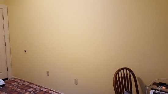 The Palm : Large, totally blank ochre-colored wall in room
