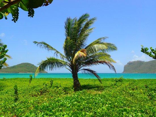 Vieux Fort, St. Lucia: Paradise at Sandy Beach