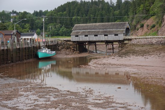 St. Martins Harbour at low tide...a 5 minute walk away.