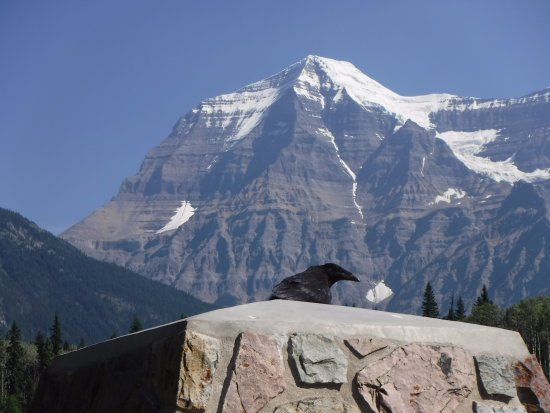 Canadian Rockies, Canada: Even the wildlife likes the view :)