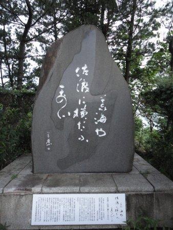 Kashiwazaki Photo