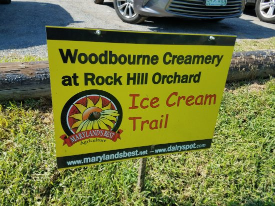 Mount Airy, MD: Good Ice Cream!
