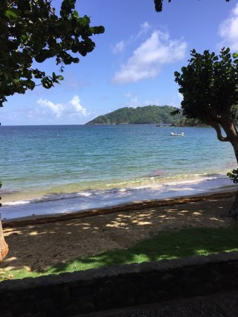 Speyside, Tobago: photo3.jpg