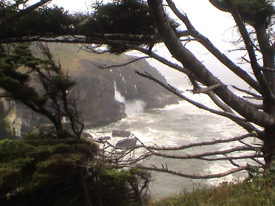 Depoe Bay, OR: Wave splashing on the cliff