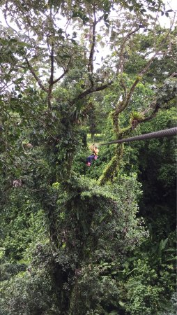 Arenal Canopy Adventure (ATHICA Canopy Tour): photo4.jpg
