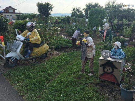 Higashiomi, Japan: 2017年8月11日訪問時