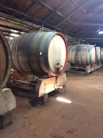 Pokolbin, Australia: These barrels cost between 16 and 20K!