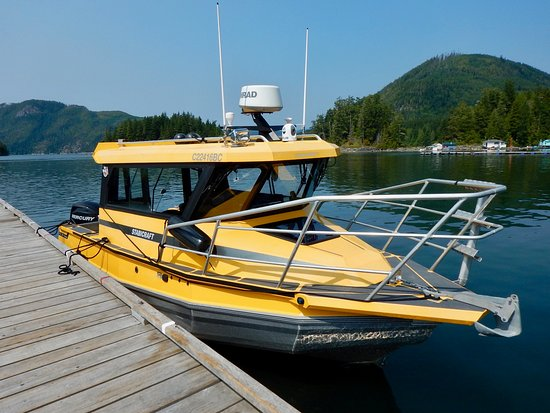 Grizzly Bear touring Boat by Sea Wolf Adventures, Port McNeill, B.C. Canada