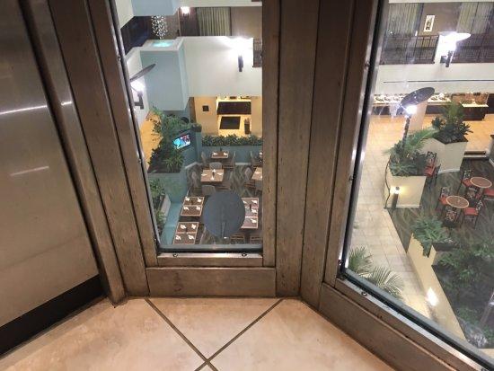 Estero, FL: In the elevator.