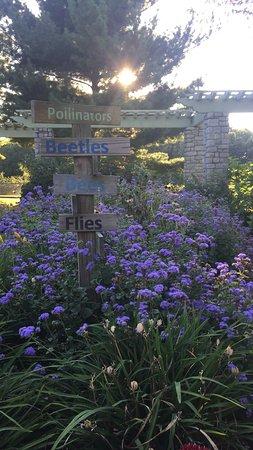 The Arboretum: photo4.jpg