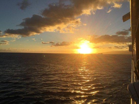 Star of Honolulu - Dinner and Whale Watch Cruises: photo5.jpg