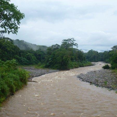 La Virgen, كوستاريكا: Sarapiqui River from suspension bridge