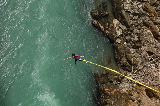 Whistler Bungee: The drop was a good distance. The rebound was smooth and did not hurt.