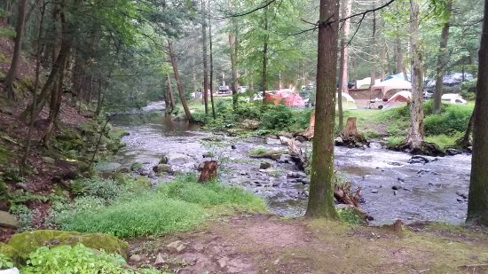 Kittatinny Campgrounds: Kittatinny Campground site #409 Trout Terrace