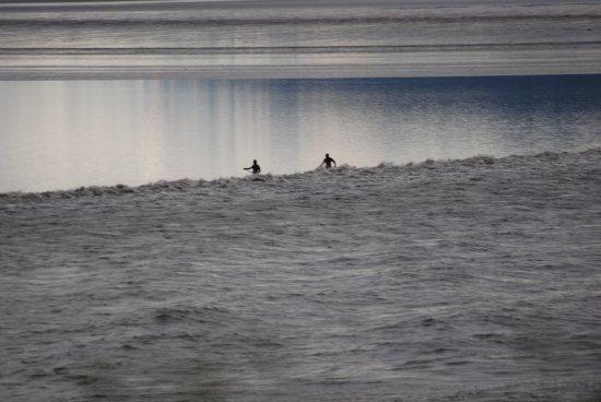 Bore Tide in Turnagain Arm: photo8.jpg