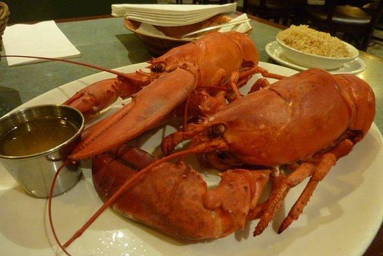 Somerville, Μασαχουσέτη: 二隻龍蝦