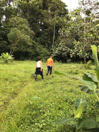 Chachagua Rainforest Eco Lodge