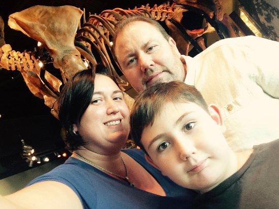 Union City, TN: dinosaur bones