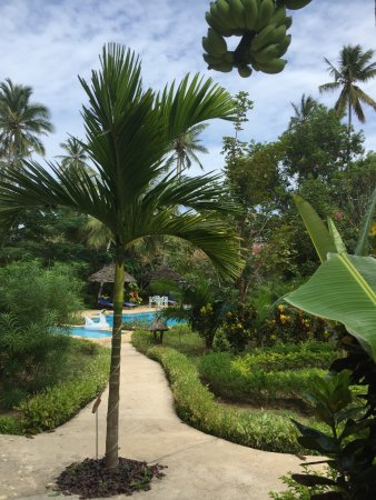 Foto de Zanzi Resort
