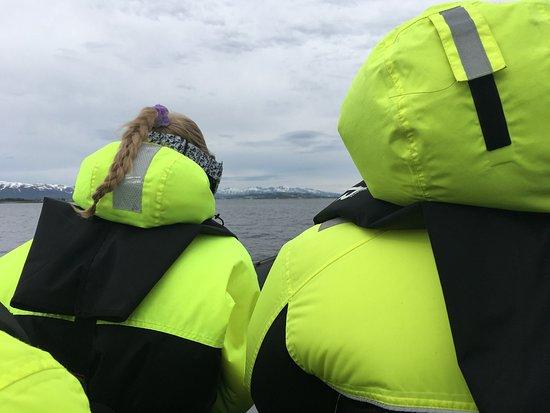 Arctic Adventure Tours: photo0.jpg